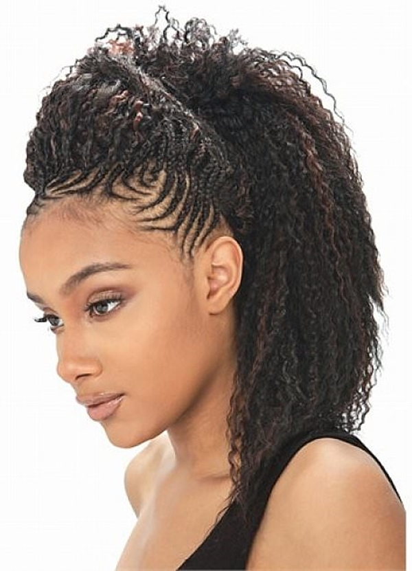 68 Inspiring Black Braid Hairstyles For Black Women ...