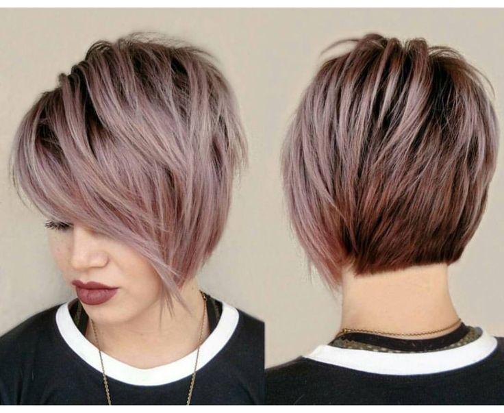 47 Amazing Pixie Bob You Can Try Out This Summer